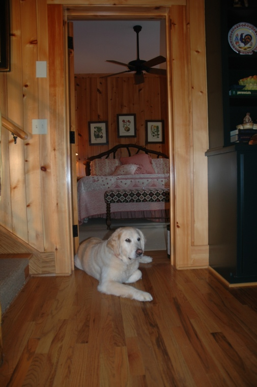 Mountain master bedroom with friend