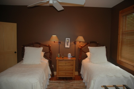 Mountain guest bedroom with chocolate walls